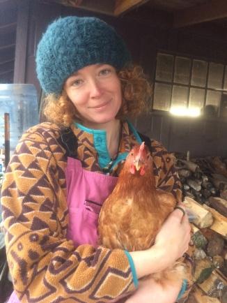 Chicken harvest